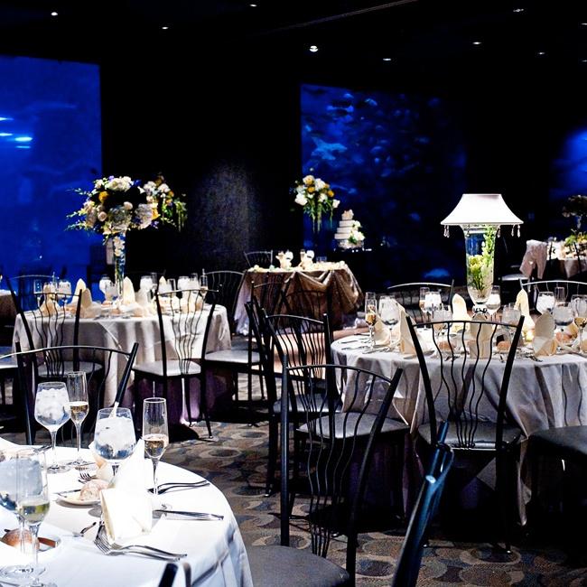 Party Halls In Camden Nj: Adventure Aquarium Wedding Reception