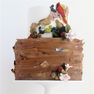 Bird Motif and Berry Cake