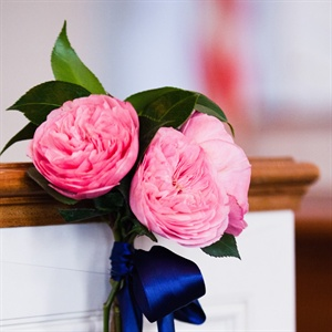 Pink Ceremony Decor