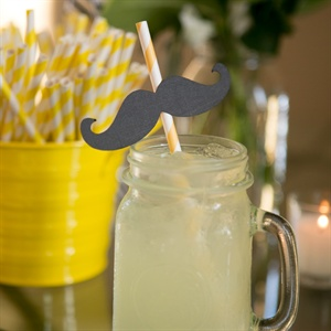 Striped Cocktail Straws