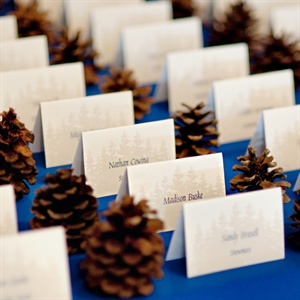 Pinecones and Escort Cards