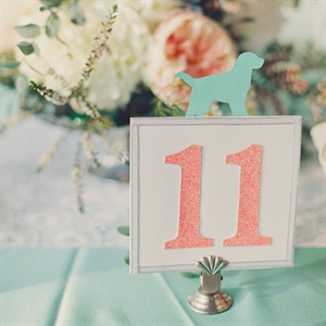 Coral and White Table Numbers
