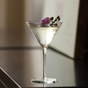 The White Cosmopolitan
