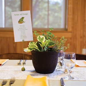 Potted Herb Centerpieces