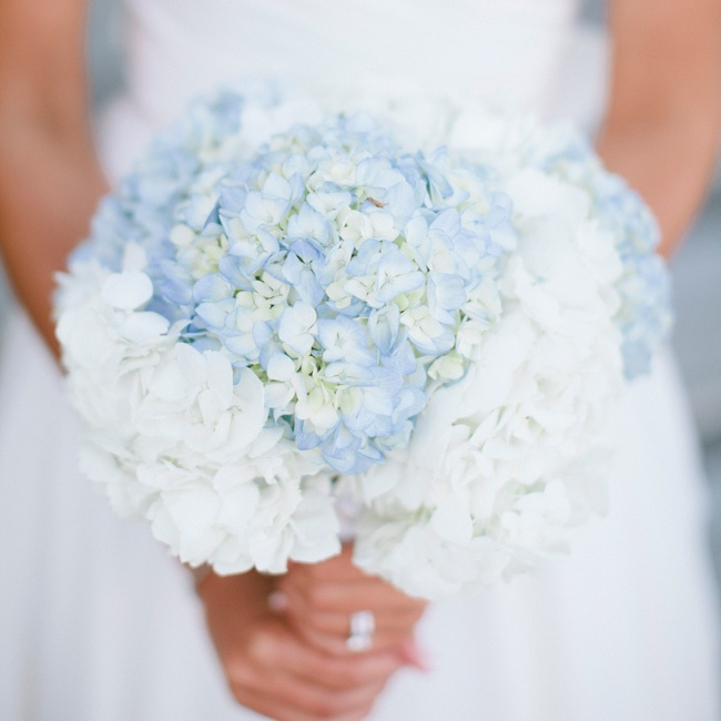 Wedding White Hydrangea: Blue And White Hydrangea Bridal Bouquet