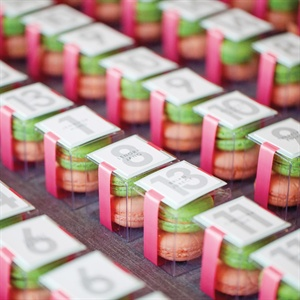Coral and Green Macaron Favors