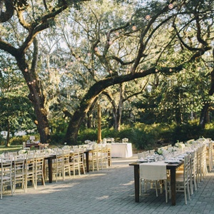Letting the ancient canopy of oak trees