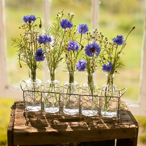 Glass Bottle Floral Display