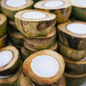 Fresh Coconut Ceviche Bowls
