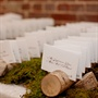Birch Log Escort Card Display