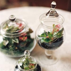 Succulent Reception Decor