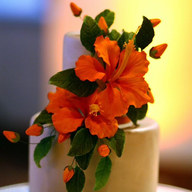 The couple wanted to include lots of traditional Indian colors, like red and gold, in their day. Their cake was decorated with an oversize hibiscus.