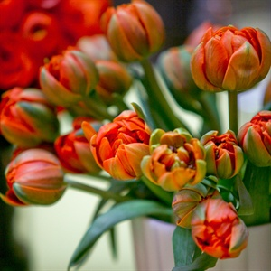 Short Orange Tulip Centerpieces
