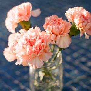 Simple Peach Carnation Centerpiece