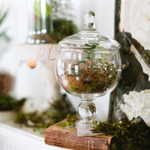 Terrarium Reception Decor