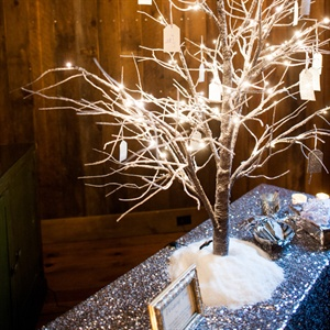 Sparkly Winter Wishing Tree Display