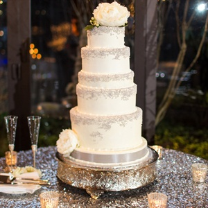 Winter White Cake Sprinkled with Small Silver Dots