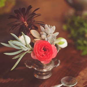 Succulent and Ranunculus Centerpiece