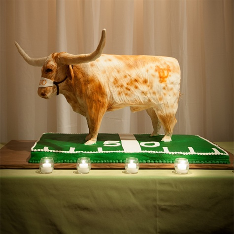 Texas Longhorns Groom's Cake