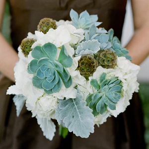 Hydrangea and Succulent Bouquet