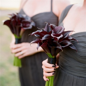 Dark Purple Calla Lilly Bouquets