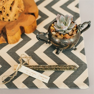 Tea and Succulent Favors