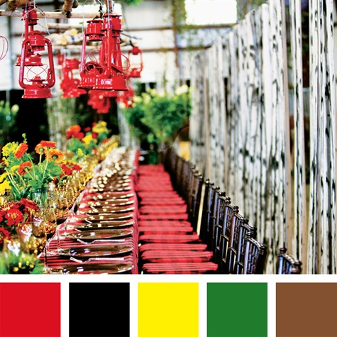 Red, Black, Yellow, Green, Brown Color Palette