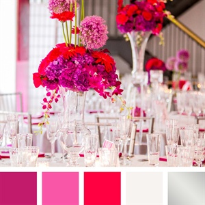 Fuchsia, Light Pink, White and Silver Color Palette