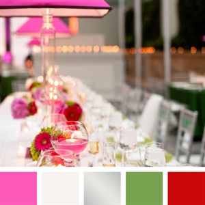 Fuchsia, Silver, Green and Red Color Palette