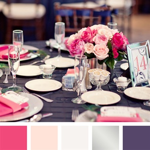 Pink, White, Silver and Purple Color Palette