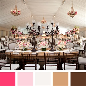 Pink, White, Tan and Brown Color Palette