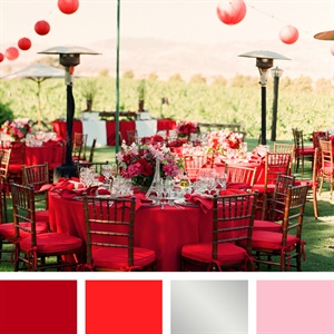 Brick Red, Scarlet, Silver, Pink Color Palette