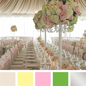 Ivory, Lemon, Pink, Green, Silver Color Palette