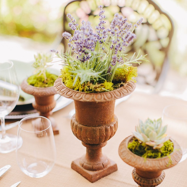 Terra cotta urns set the tone for a rustic chic vineyard wedding.