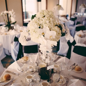 Modern Orchid and Hydrangea Centerpiece