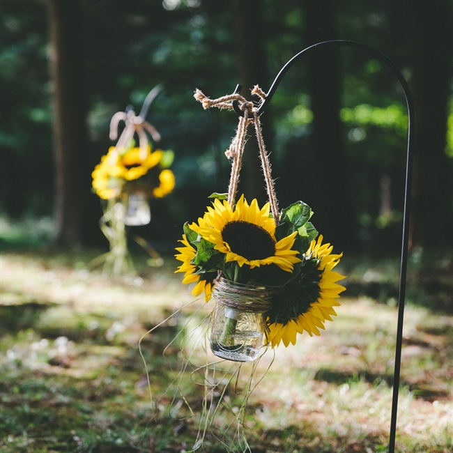 DIY Mason jars filled with sunflowers and hung with twine led the way to the ceremony site.