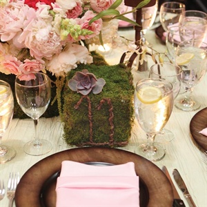 Moss Cube Table Number