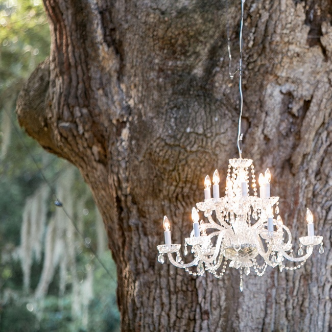 Megan used the large oak trees as a dramatic backdrop for her designs, including white chandeliers.