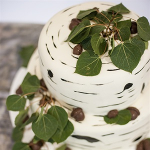 Nature-Inspired Wedding Cake