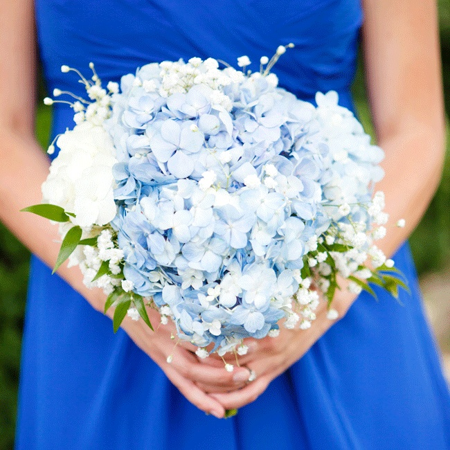 Blue Hydrangea Wedding Flowers: 301 Moved Permanently