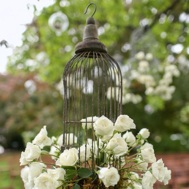 Sweet vintage birdcages filled with white roses hung from trees, decorating the outdoor garden ceremony.