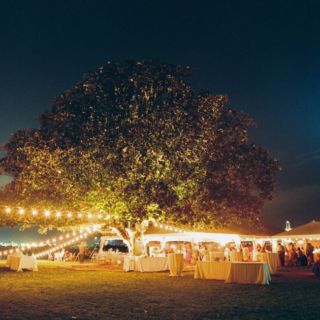 Guests enjoyed an Indian-inspired menu and a mix of indie pop and folk music at the festive outdoor wedding.