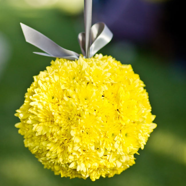 Yellow mum pomanders hung by silver ribbon added a pop of color to the ceremony decor.