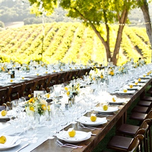 Rustic Vineyard Reception