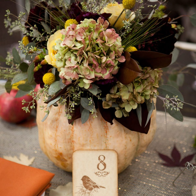 These beautiful pumpkin centerpieces were a long time in the making. Months before the wedding, Caitlin and Mark selected several varieties of pumpkins and had them grown by the Boujikian Farm in Torrance, CA. The day before the wedding the couple and their families hollowed out the pumpkins and filled them with beautiful arrangements of hydrangeas ...
