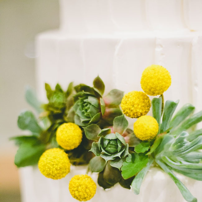 Megan and Brent chose a tiered cake with buttercream frosting. Billy balls and succulents added a splash of color to the white backdrop.