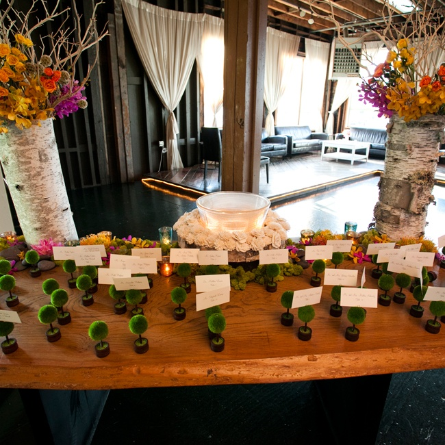 The couple created a whimsical display for the escort cards, playing off a rustic woodland with birch tree vases filled with bright modern floral arrangements.