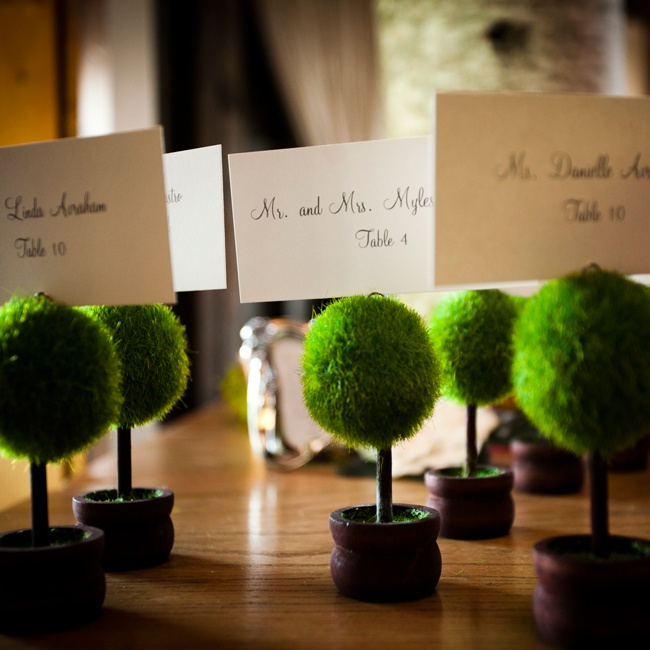 The couple used mini topiary trees as escort card holders for a chic rustic touch to the decor.