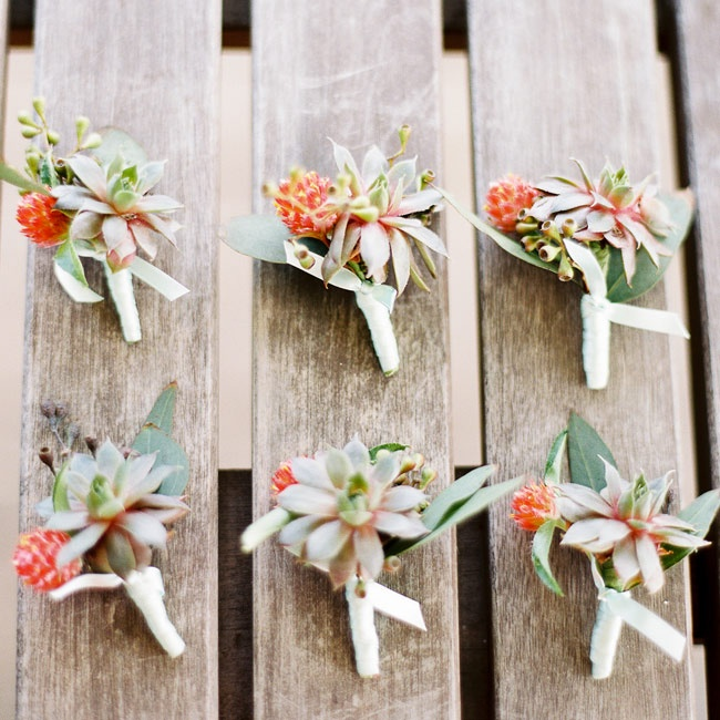 The groomsmen's boutonnieres were made with green succulents and red thistles.