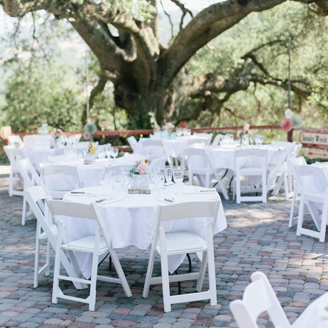 Guests enjoyed the reception dinner under large, old oak trees on tables with white tablecloths and pastel floral arrangements.